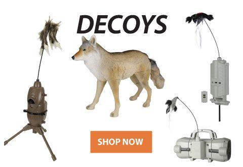 Decoys Banner